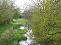 Hatherton Branch Canal, near Four Crosses, Staffordshire - geograph.org.uk - 787255.jpg