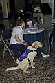 Haute Dogs Night (425390527).jpg