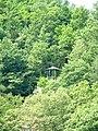 Hideaway in the trees - panoramio.jpg