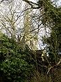 High Coniscliffe 075.jpg