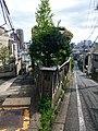 Hinashi-zaka Slope - panoramio.jpg