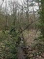 Hinton, stream - geograph.org.uk - 1227077.jpg