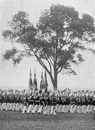 Tempelhofer Feld - The historic poplar on the Tempelhofer Felde. It stood since the time of the Soldier King and King Frederick the Great. Here, the 3rd Regiment of Foot Guardspassby.