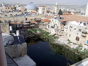 Hezekiah's Pool - Image: Hizkiyahoo Pool winter 2010