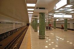 Holosiivska metro station Kiev 2011 02.jpg