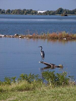 Horseshoe Lake (Madison County, Illinois) - Image: Horseshoe Lake Madison County Illinois