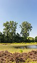 Hortus Haren d.j.b 19.jpg
