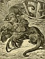 Hunting and trapping stories; a book for boys (1903) (14595845528).jpg