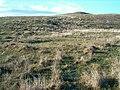 Hut circles at Borichill Mor - geograph.org.uk - 164633.jpg