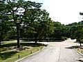 Hyehwa fall 2014 087 (Changgyeonggung).JPG