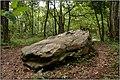 IMGP0747 SAINT-PARDOUX-ET-VIELVIC - Dolmen de Bonarme.jpg