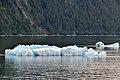 Ice Berg - panoramio.jpg