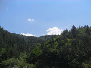 Mount Ilgaz National Park - Image: Ilgaz Dağı