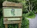 Information board in Coedydd Aber NNR, near Abergwyngregyn - geograph.org.uk - 1957452.jpg