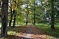 Ingliste mõisa park 1.jpg