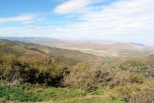 Peninsular Ranges - View from Inspiration Point in the Laguna Mountains, 2013. Chaparral in the foreground, Anza Borrego Desert State Park on the right of the background.