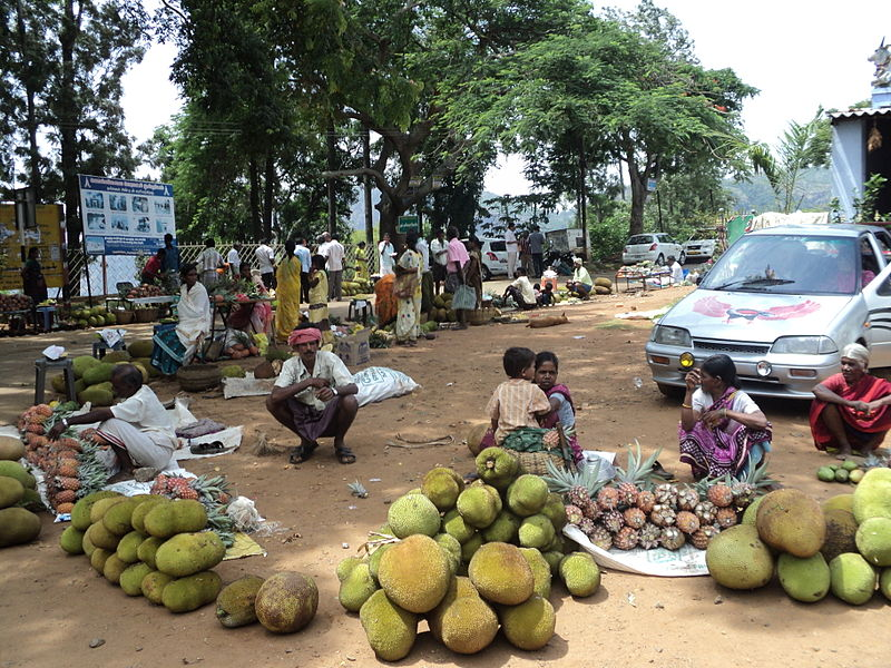 പ്രമാണം:Jack-fruits-in-the-market.JPG
