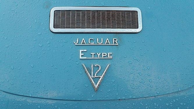 Jaguar E-type bonnet.jpg