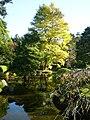 Japanese Tea Garden 3.JPG