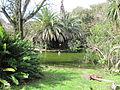 Jardim Botanico Tropical (14028513393).jpg
