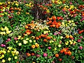 Jardins du front de mer à Royan - panoramio.jpg