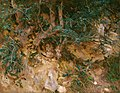 John Singer Sargent - Valdemosa, Majorca - Thistles and Herbage on a Hillside.jpg
