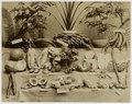 KITLV - 18857 - Fruit from Singapore - circa 1900.tif