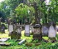 Kamienna Góra, cmentarz żydowskiPICT6594.JPG