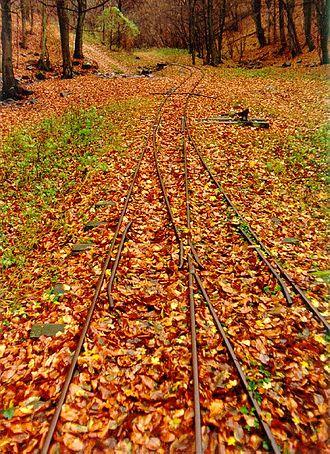 Kemence Forest Museum Railway - Halyagos terminus in 1991