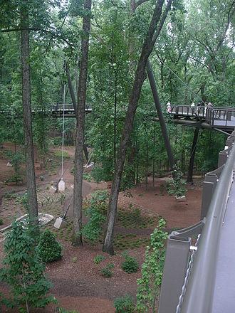 Canopy walkway - Urban forest canopy walk in Atlanta Botanical Garden