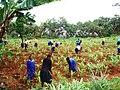 Kids at Maringa Chini Primary School, Tanzania - panoramio (4).jpg