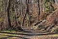 Klagenfurt Villacher Vorstadt Kreuzbergl Waldweg 25012018 2399.jpg