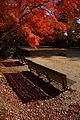 Kobe Suma Rikyu Park13bs4592.jpg