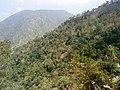 Kodai Ghat - panoramio.jpg