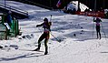 Kontiolahti Biathlon World Cup 2014 31.jpg