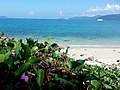 Kota Kinabalu, Sabah, Malaysia - panoramio (20).jpg