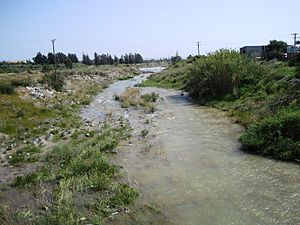 Kouris River - Lower section of the Kouris River