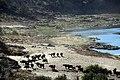 Kruger National Park, South Africa (36478592850).jpg