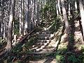 Kumano Kodo Dainichigoe World heritage29.JPG