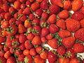 Kusune Strawberry No,1.JPG