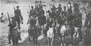 Kuvva-i Milliye millitias, 1919
