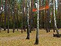 Kyiv Sovky Park14.JPG