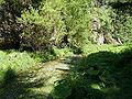 Kyjovské údolí - Křinice.jpg
