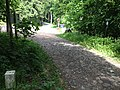 Lückendorf Weg zum Forsthaus 6 2013 N.jpg