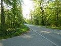 L604 Richtung Waldstadt bei der Stutenseer Allee - geo.hlipp.de - 18161.jpg