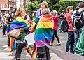 LGBTQ Pride Festival 2013 - There Is Always Something Happening On The Streets Of Dublin (9177895183).jpg