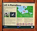 LIC A Ramallosa.JPG