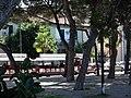 La Pineta - panoramio.jpg