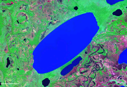 Lago Rogagua Bolivia Satellite map 66.98665W 13.png