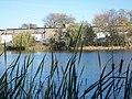 Lambert Lake - panoramio (7).jpg